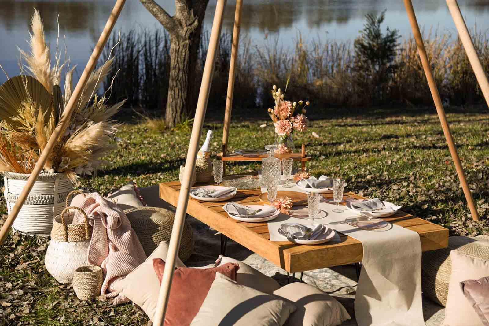 picnic setting-3